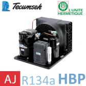 Groupe de condensation Tecumseh CAJN4461YHR - R-134a