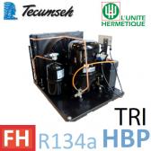 Groupe de condensation Tecumseh TFHT4525YHR - R-134a