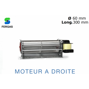 Ventilateur Tangentiel TGA 60/1-300/20 de Fergas